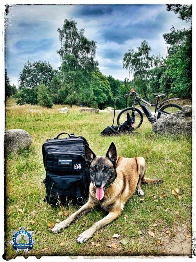 """""""Diensthunde müssen auch mal Urlaub machen... Viele Grüße aus der Lüneburger Heide, Diensthündin Lahja und Anja"""""""
