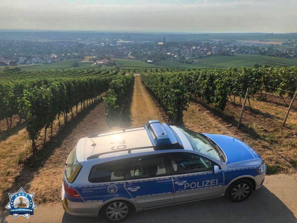Grüße aus dem größten Weinanbaugebiet Deutschlands