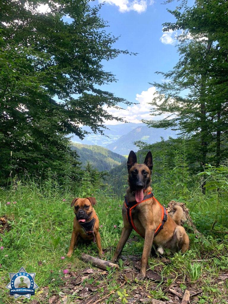 """""""Auch Diensthund Karl-Heinz sendet euch mit Freundin Elsa liebe Urlaubsgrüße aus Tirol 😊 """""""