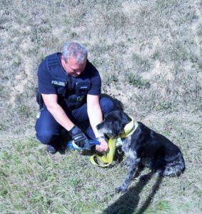 Ausgebüchst: Polizisten retten Jagdhund von der Autobahn