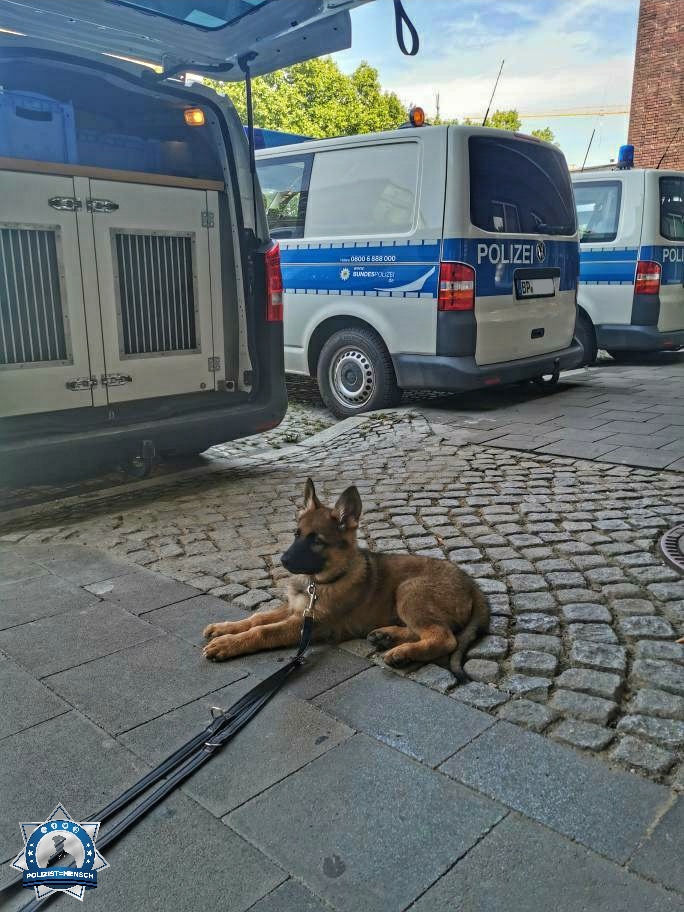 """""""Huhu, der kleine Chase hatte seinen ersten Praktikumstag bei der Bundespolizei 😍"""""""