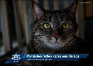 Vermisstensache geklärt: Polizisten retten Katze aus Garage