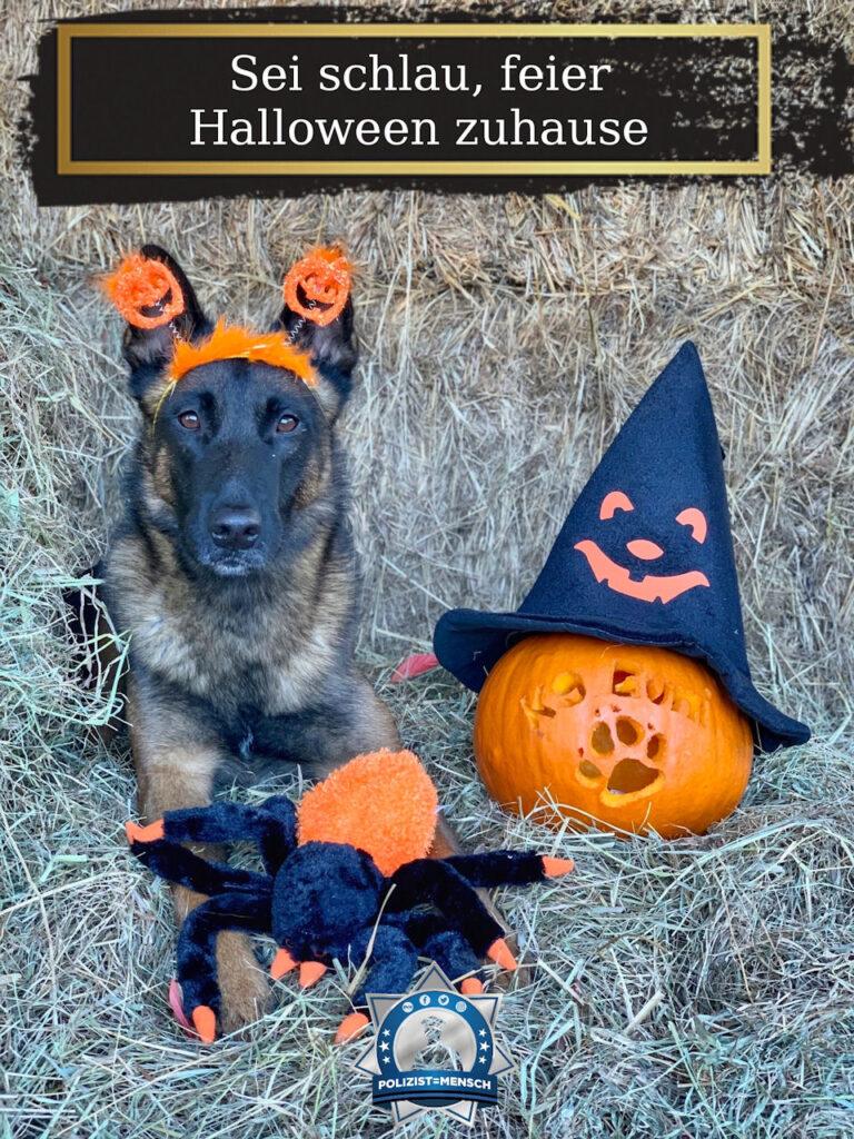 Sei schlau, feier Halloween zuhause 🎃