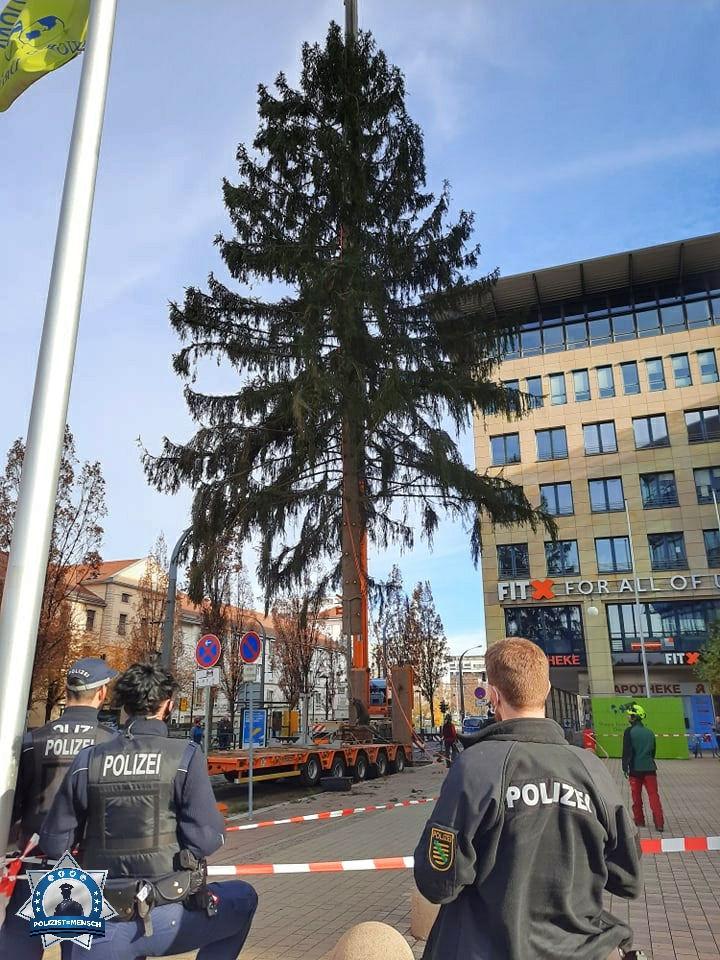"""""""Vorweihnachtliche Grüße aus Dresden von Clément und Kollegen/Kolleginnen"""""""