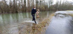 Dem helfen, der Hilfe braucht: Rehe aus Hochwasser gerettet