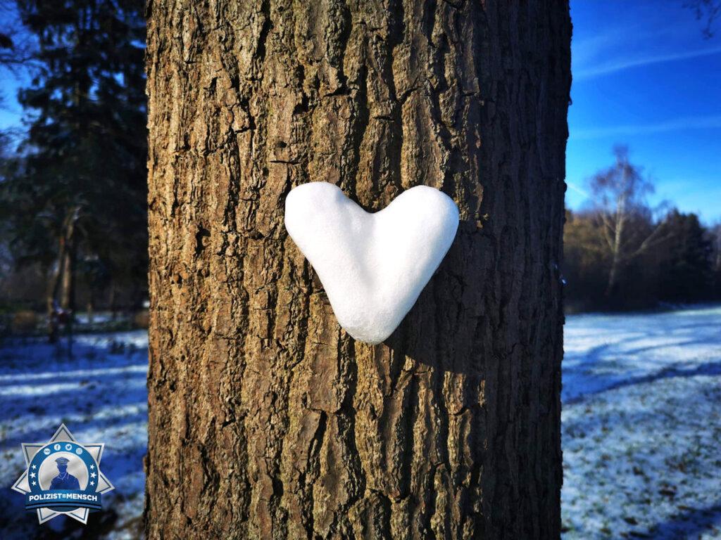 Auf Streife entdeckt: Schneeherz am Baum