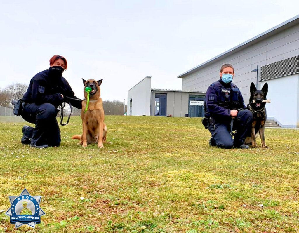 """""""Jährlich Prüfung im Sprengstoffbereich mit einem Sehr Gut abgeschlossen. Liebe Grüße von Diensthund Jim und Diensthündin Luna"""""""