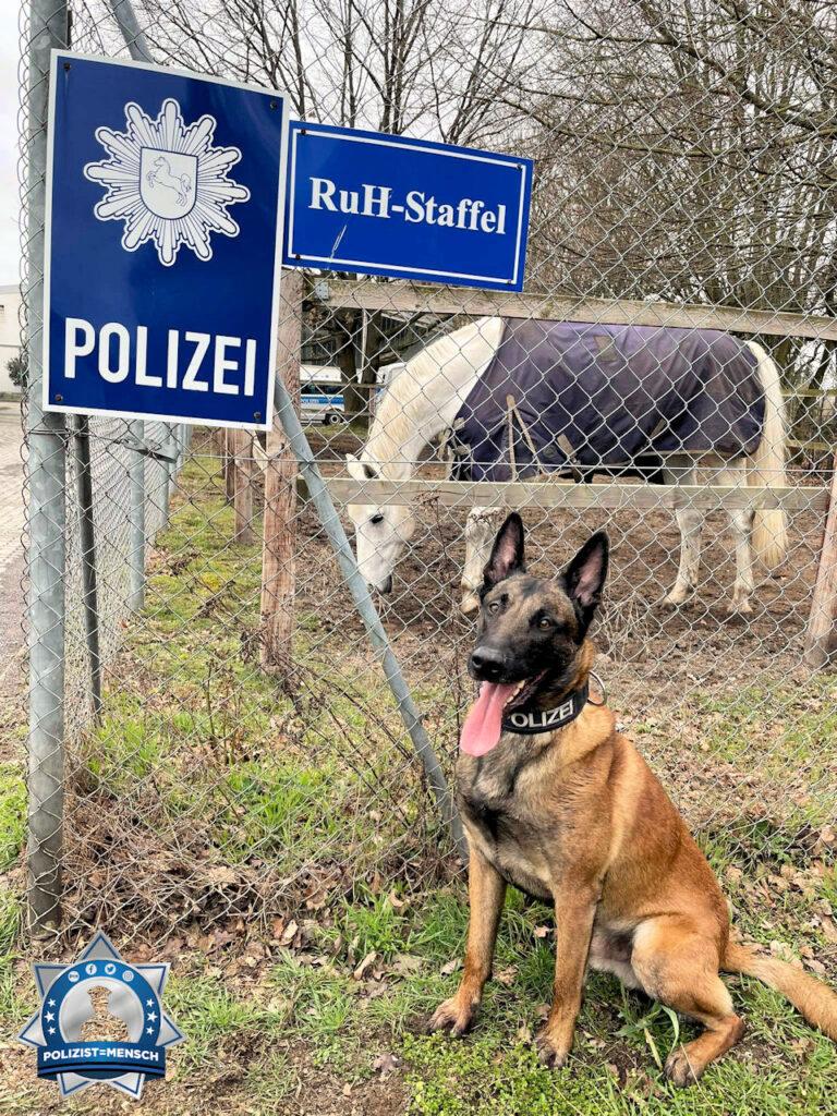 """""""Diensthund Fiete sendet liebe Grüße 😅"""""""