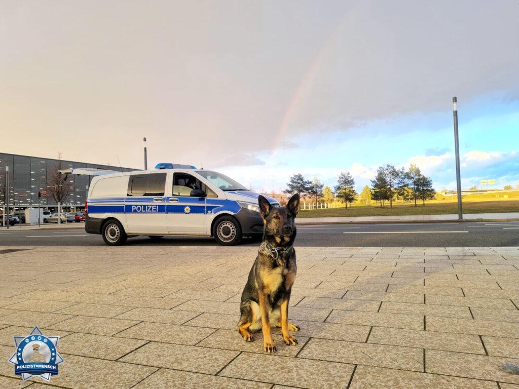 """""""Egal ob Regen, Hagel oder Schnee. Diensthund-Azubine Bonny liebt ihren Job am Flughafen Berlin Brandenburg. Liebe Grüße und schönen Sonntag von Bonny und ihrer 'Leinenhalterin'."""""""