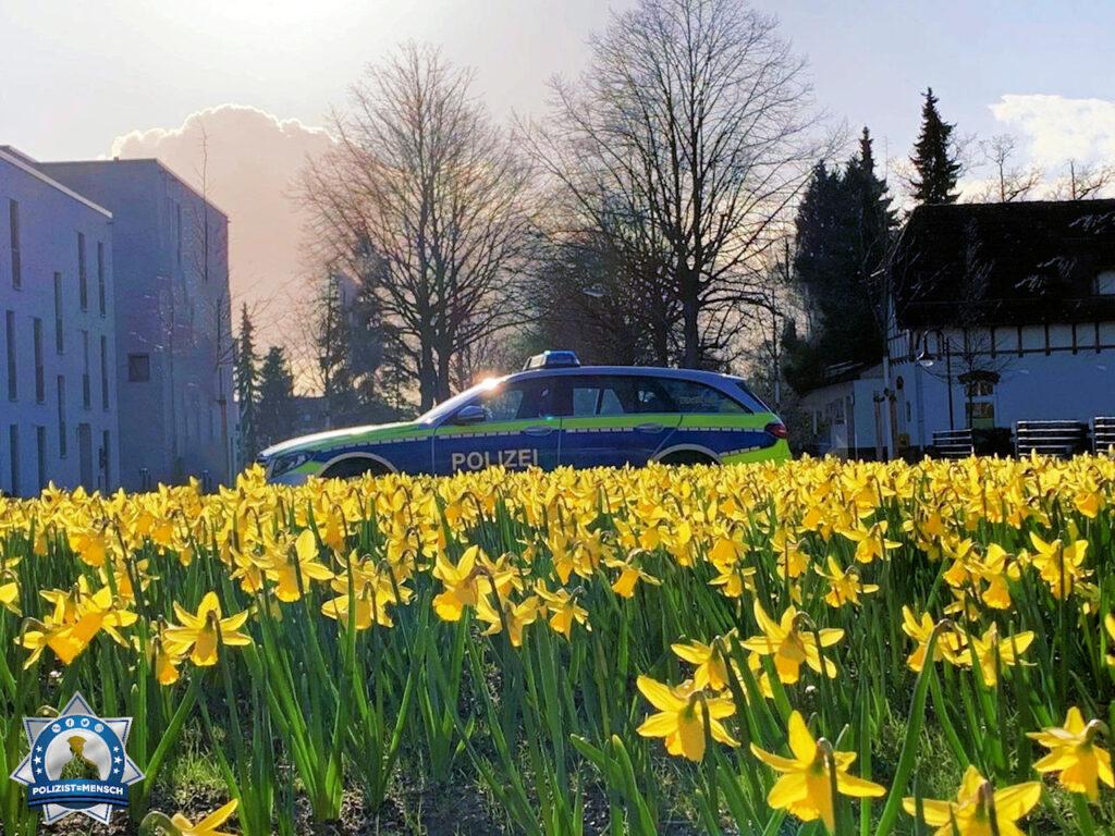 Unser neues Frühlingstitelbild aus Hamburg