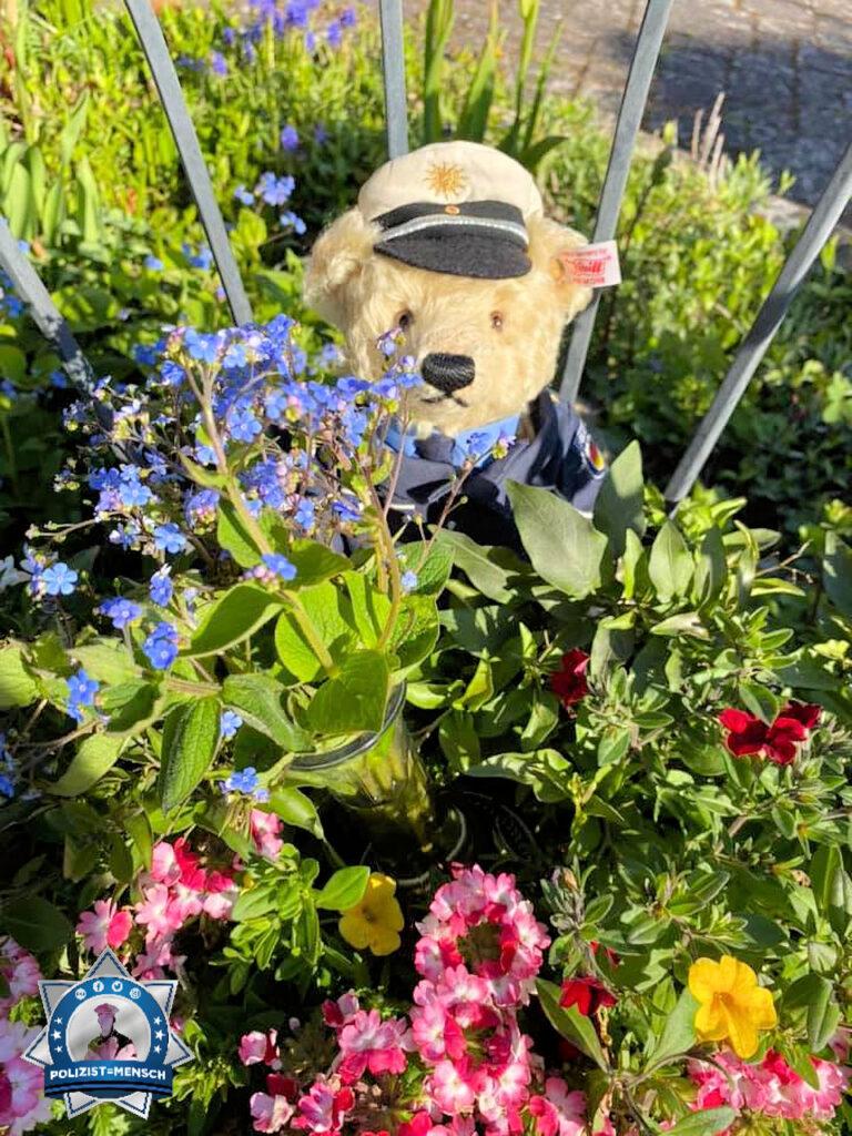 Der Steiff Polizei Teddybär wünscht allen Müttern alle Gute