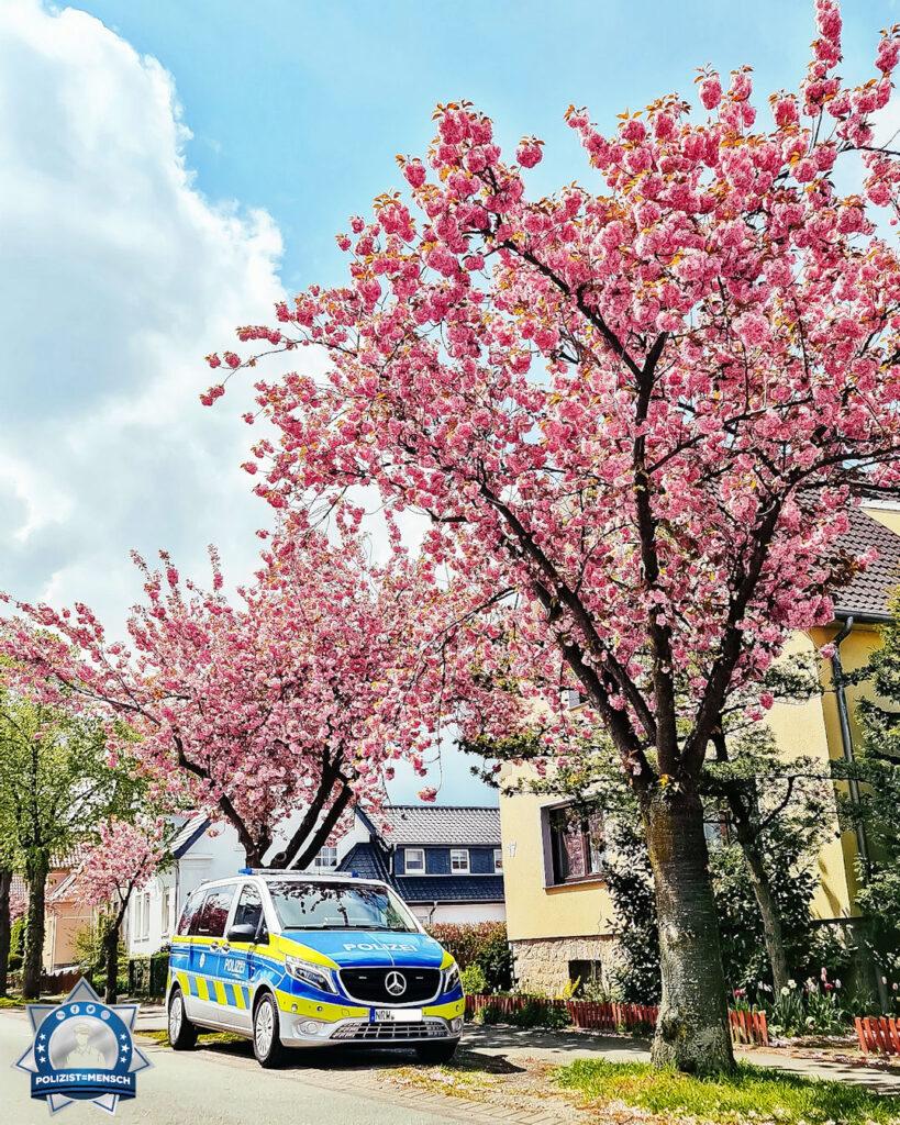 """""""Dieses Bild macht doch Lust auf Sonne und Sommer! Auch wir haben ein paar schöne Kirschbäume zu bieten! Liebe Grüße aus der KPB Lippe. Momo"""""""