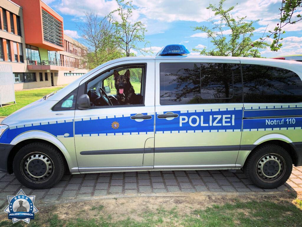 """""""Hallo, ich sende euch liebe Grüße von der Diensthundstaffel aus dem Polizeipräsidium Westhessen. Alina mit Diensthund Boris"""""""