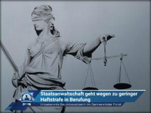 Unbekannt Baumbesetzerin im Dannenröder Forst: Staatsanwaltschaft geht wegen zu geringer Haftstrafe in Berufung