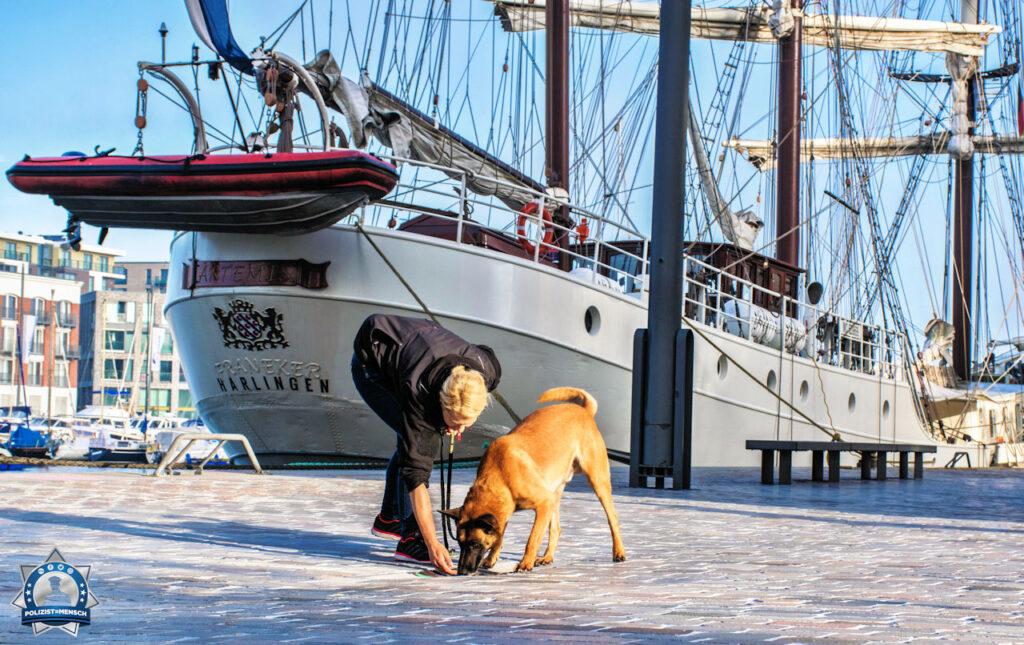"""""""Sprengstoffspürhundeeinsatz in Bremerhaven bei den Maritimen Tagen 2021. Liebe Grüße von Nancy mit Diensthund Willi"""""""
