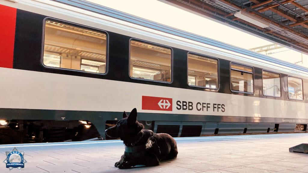 """""""Viele Grüße von Nala aus dem Dienst des Zoll am Bahnhof in Konstanz."""""""