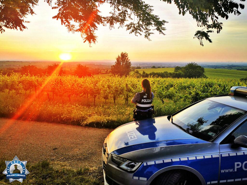 Unser neues Titelbild kommt von Dennis und Eileen aus Landau in der Pfalz.