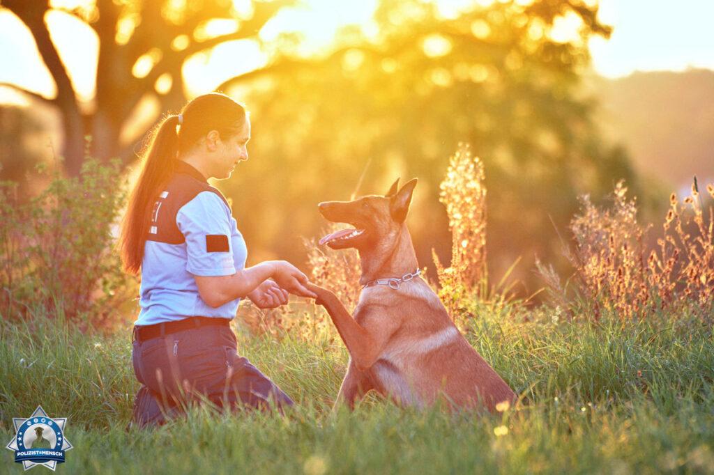 Zum Welthundetag ein Bildgruß von Loki und Jasmin